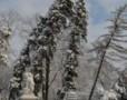 Zapada in Gradina Cismigiu din Bucuresti