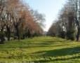 Iarna in Gradina Cismigiu din Bucuresti
