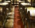 Degustare de vin la crama Lacerta