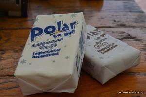 1_iunie_Inghetata_Polar