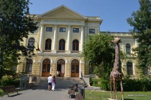 Muzeul National de Istorie Naturala Grigore Antipa Bucuresti