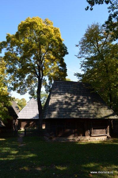 Bucuresti_Muzeul_National_al_Satului_toamna_36