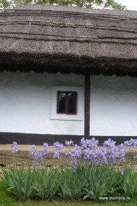 Bucuresti_Muzeul_Satului (2)