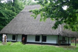 Bucuresti_Muzeul_Satului (8)