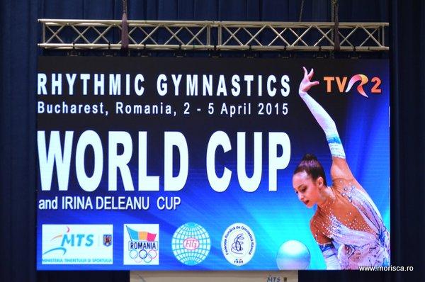 Gimanstica ritmica - Sala Polivalenta Bucuresti - aprilie 2015 - finala pentru proba de minge