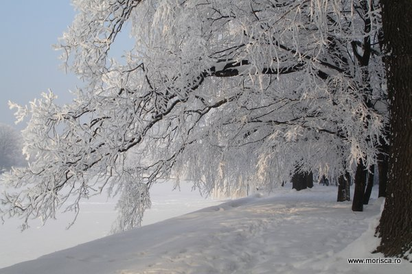 Iarna in Parcul Herastrau din Bucuresti
