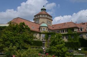 Plate si flori Botanischer Garten München-Nymphenburg