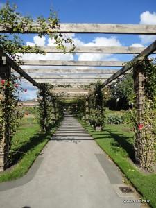Kew Gardens Gradina Botanica Londra