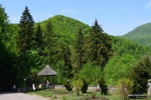 Manastirea_Tismana (9)