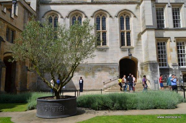 Marea Britanie Oxford Christ Church Cathedral
