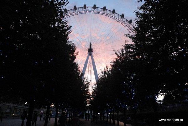 Marea_britanie_London_Eye_19