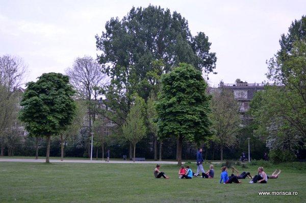 Primavara in Vondelpark - Amsterdam