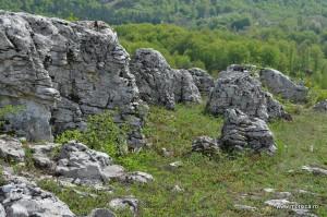 Ponoarele_Campurile_de_lapiezuri (3)