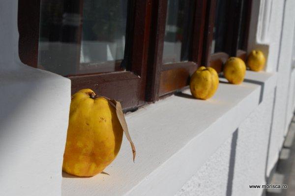 Gutui coapte in geam