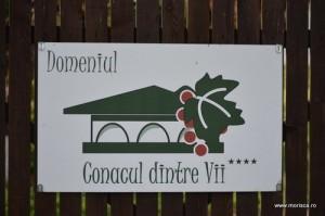 Urlati_Domeniul_Conacul_dintre_Vii (10)